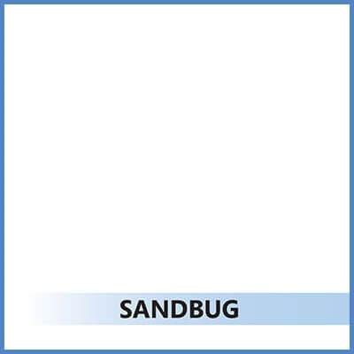 6-sandbug